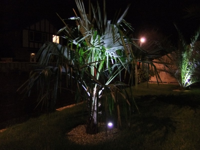 Garden lighting 1
